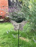 Butterfly Grave Marker ~ Special Son